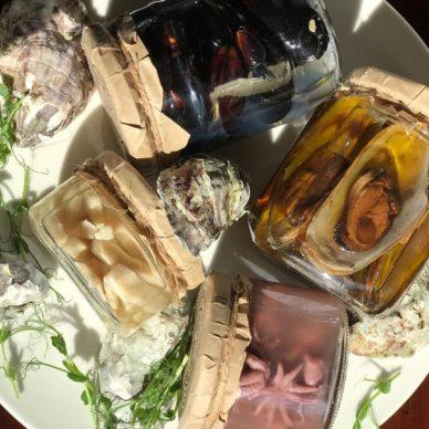 morskie-delikatesy